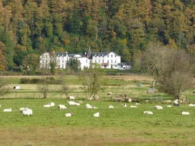 Lochside thumbnail 8