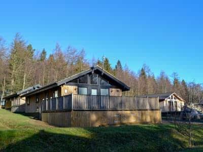 Photo of Pine Tree Lodge