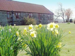 Grosmont Cottage