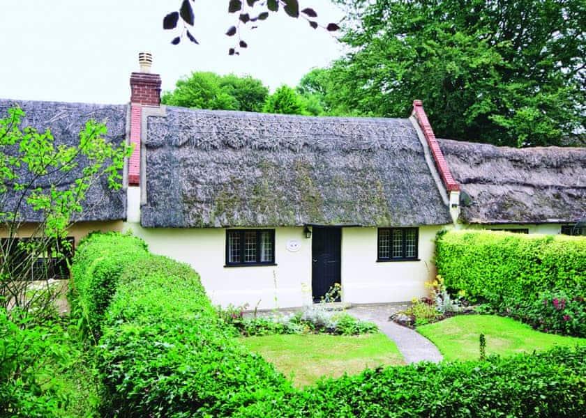 Violet Cottage | Violet Cottage, Catfield, nr. Potter Heigham