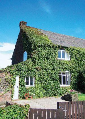 Millington Hall Cottage