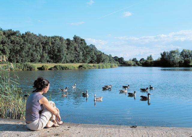 The lovely lakeside setting
