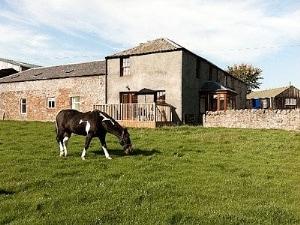 Digger's Cottage