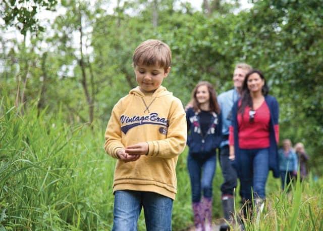 Hoveton nature trail