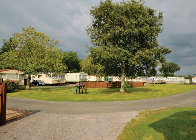 Park setting