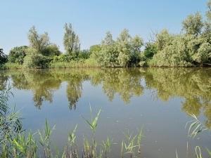 Angler's Haven