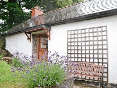 Brynhyfryd Cottage thumbnail 6