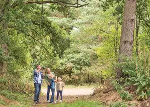 Tilford Woods Lodge Retreat