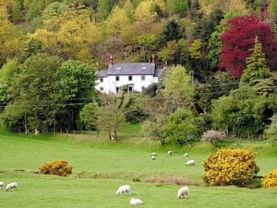 Holiday Cottage Aberystywth Wales