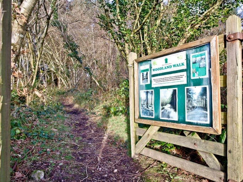 Wonderful woodland wildlife walk with the grounds   Lily, Woodland Retreat - Woodland Retreat, Wadebridge