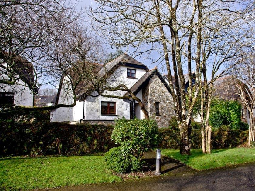 Wonderful holiday cottage in a wooded location | Primrose, Woodland Retreat - Woodland Retreat, Wadebridge