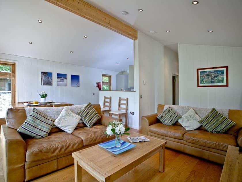 Comfortable living area | Haytor Lodge, 9 Indio Lake - Indio Lake, Bovey Tracey