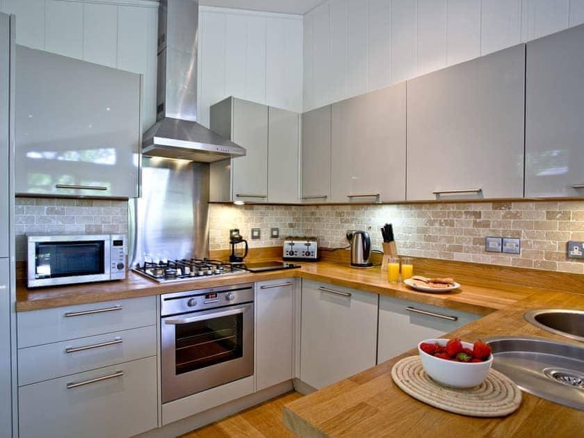 Well equipped kitchen area | Haytor Lodge, 9 Indio Lake - Indio Lake, Bovey Tracey