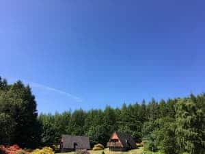Flowerburn Holidays - Thistle Lodge