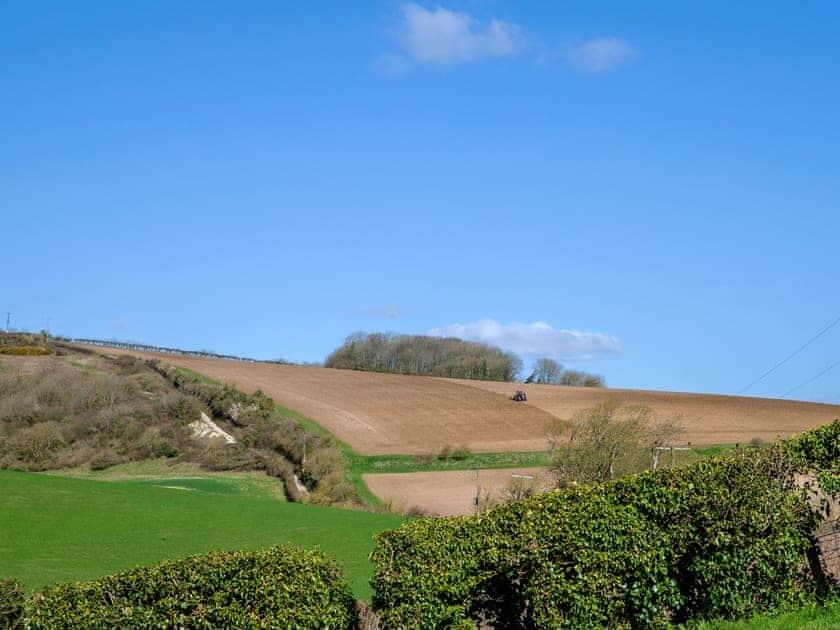 Surrounding area   Rowborough Cottage - Cheverton Farm, Shorwell