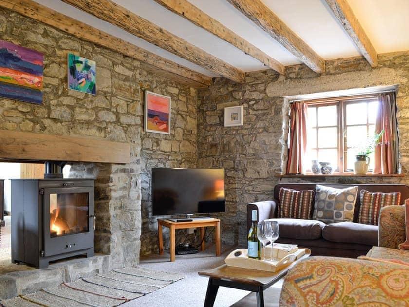 Cosy living room with wood burner   Perthygwenyn, Mydroilyn, near Aberaeron