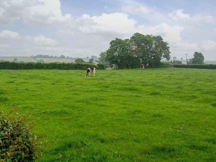 View | The Sett, Stone Allerton, near Cheddar