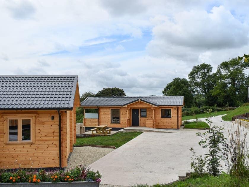 Exterior   Snowdrop - Buckland Farm Log Cabins, Buckland St Mary, near Taunton
