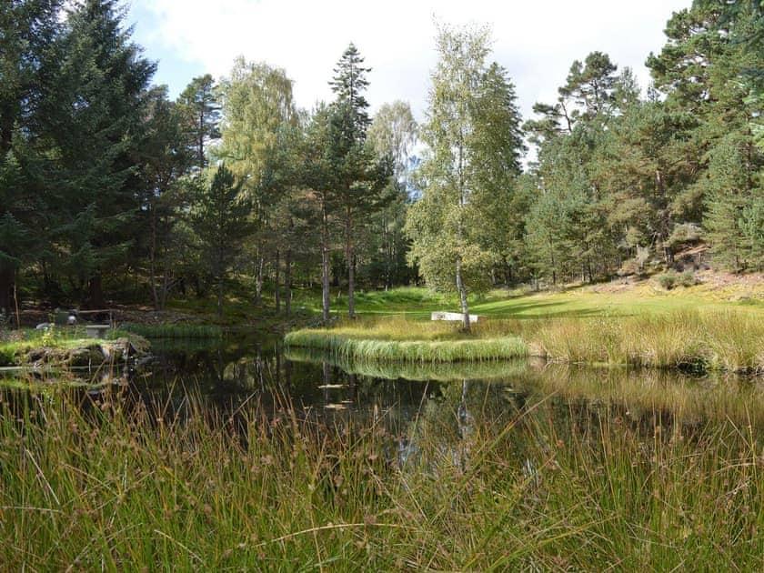 Garden and grounds | Fairwinds, Carrbridge, near Aviemore
