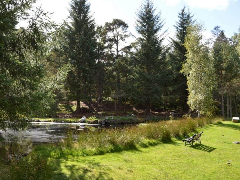 Garden and grounds   Fairwinds, Carrbridge, near Aviemore