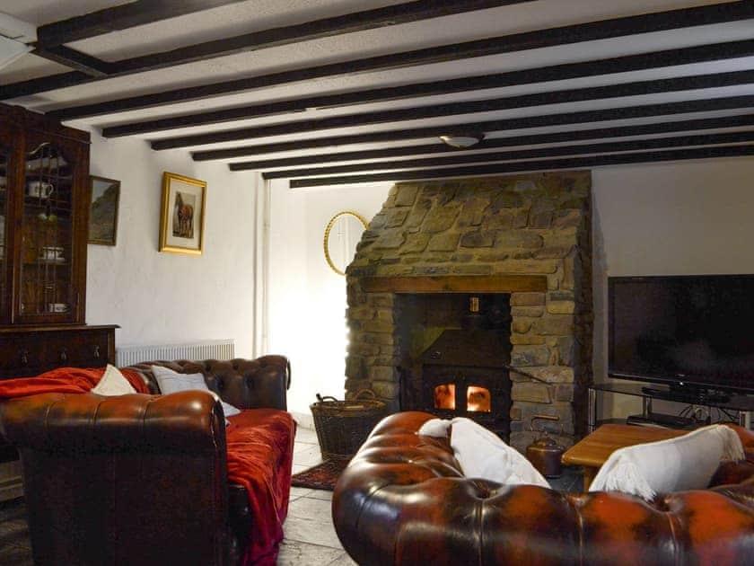 Welcoming living area with wood burner   Tryal Cottage, Cilau Aeron, near Aberaeron