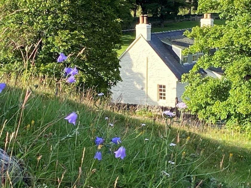 Exterior   Brewlands Cottage - Brewlands Estate, Glenisla, Blairgowrie