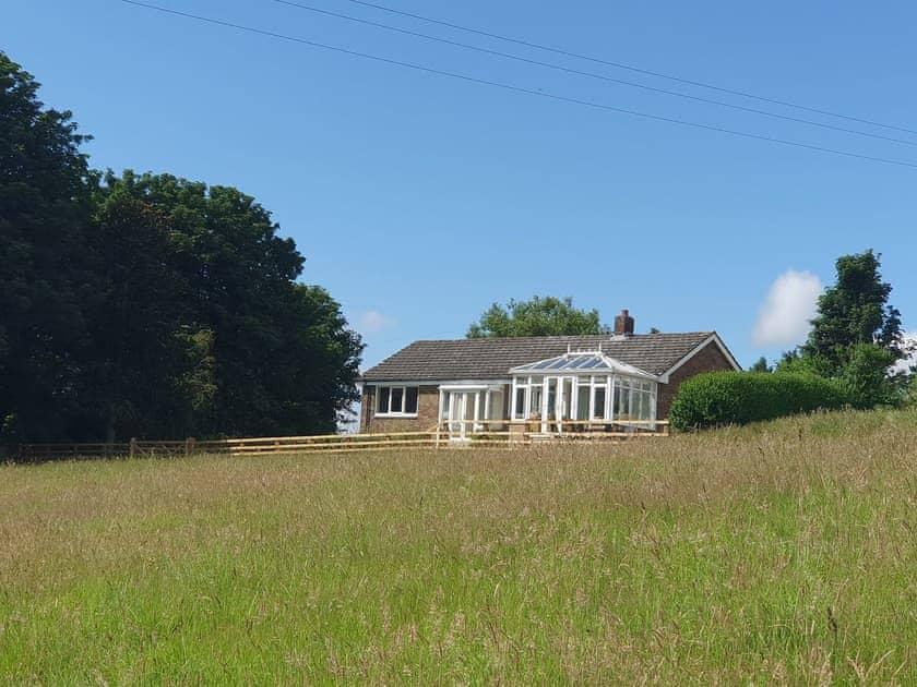 Chapman Hill Farm - High Pastures