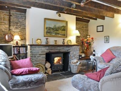 Living room | Highbrook Cottage, New Radnor