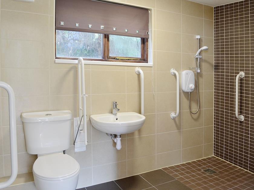 Wet room | River View Cottage - Rosecraddoc Manor, Liskeard