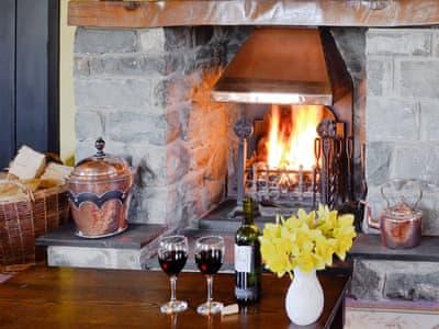Cosy open fire | North Lodge, Dyffryn Ardudwy, near Harlech