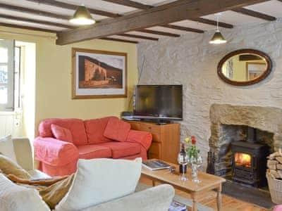 Cosy living room | Hen EfailOld Smithy, Tregaron
