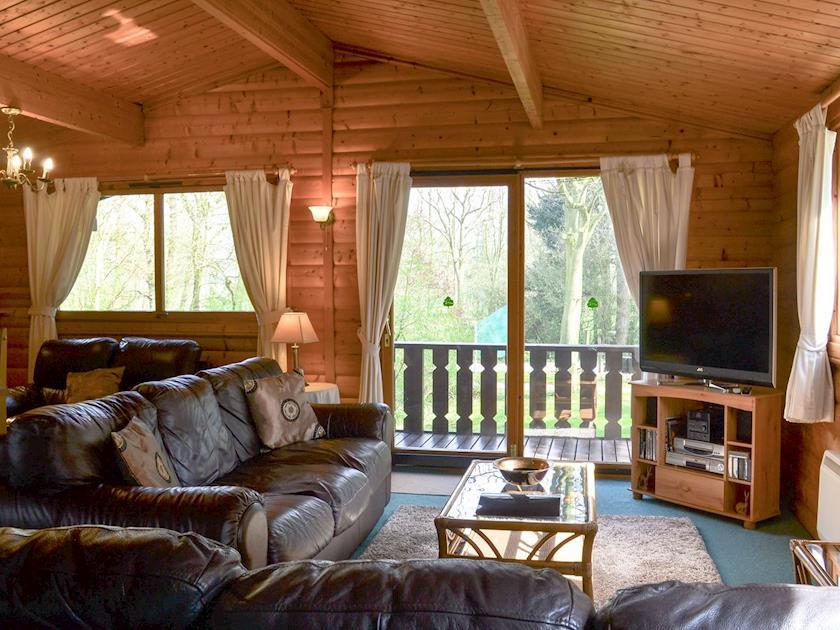 Comfortable open plan living space | Scandanavian Lodge, Kenwick Park, near Louth