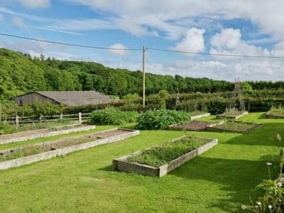 Garden | Greenwood Grange Cottages - Henchard, Higher Bockhampton, near Dorchester