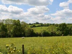 Downlands Farm - Edward's Cottage