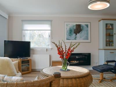 Delightful living room | Afton, Aberfeldy
