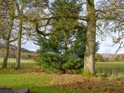 Surrounding area | Auchendennan  - Rose Cottage - Auchendennan, Arden, Alexandria