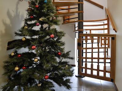 Stairs | The Owl House - Tan Y Foel, Llanfihangel, near Llanfyllin
