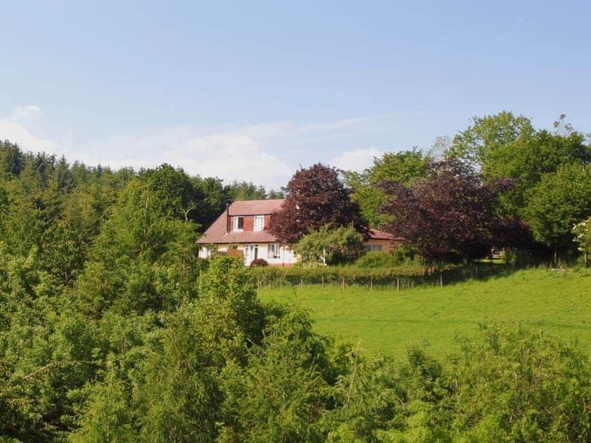 Drewstone Farm Cottages - Woodland Hideaway