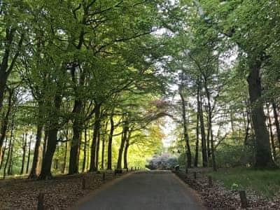 Balbirnie Park | The Gate House, Markinch, near Glenrothes