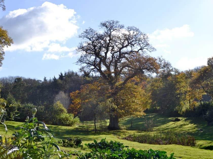 View | Yet Farm Cottage, Cenarth