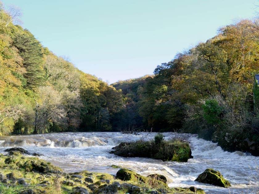 Cenarth Falls   Carmarthenshire, Wales
