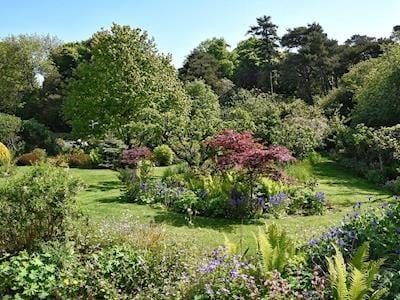Garden | The Shepherd's Cottage, Dunbar, nr. Stenton