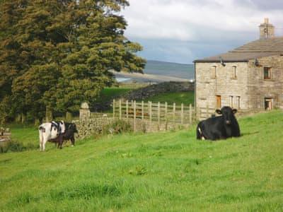 Exterior | Aysgill Cottage, Gayle near Hawes
