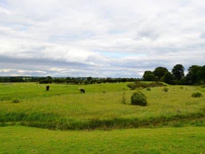 Bleatarn Park 'On the Hadrians Wall Path' Centurion, Irthington