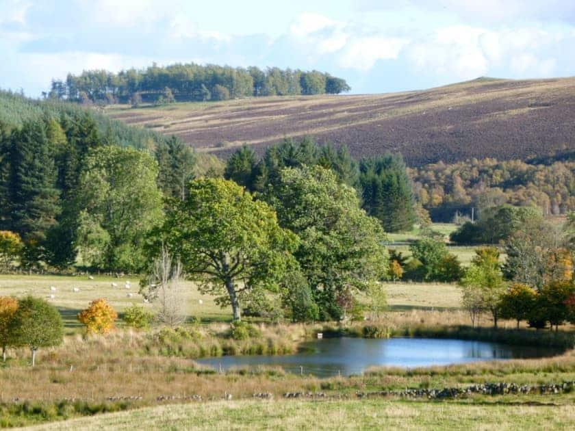 Surrounding area | Brewlands Estate - Brewlands Cottage, Glenisla, Blairgowrie