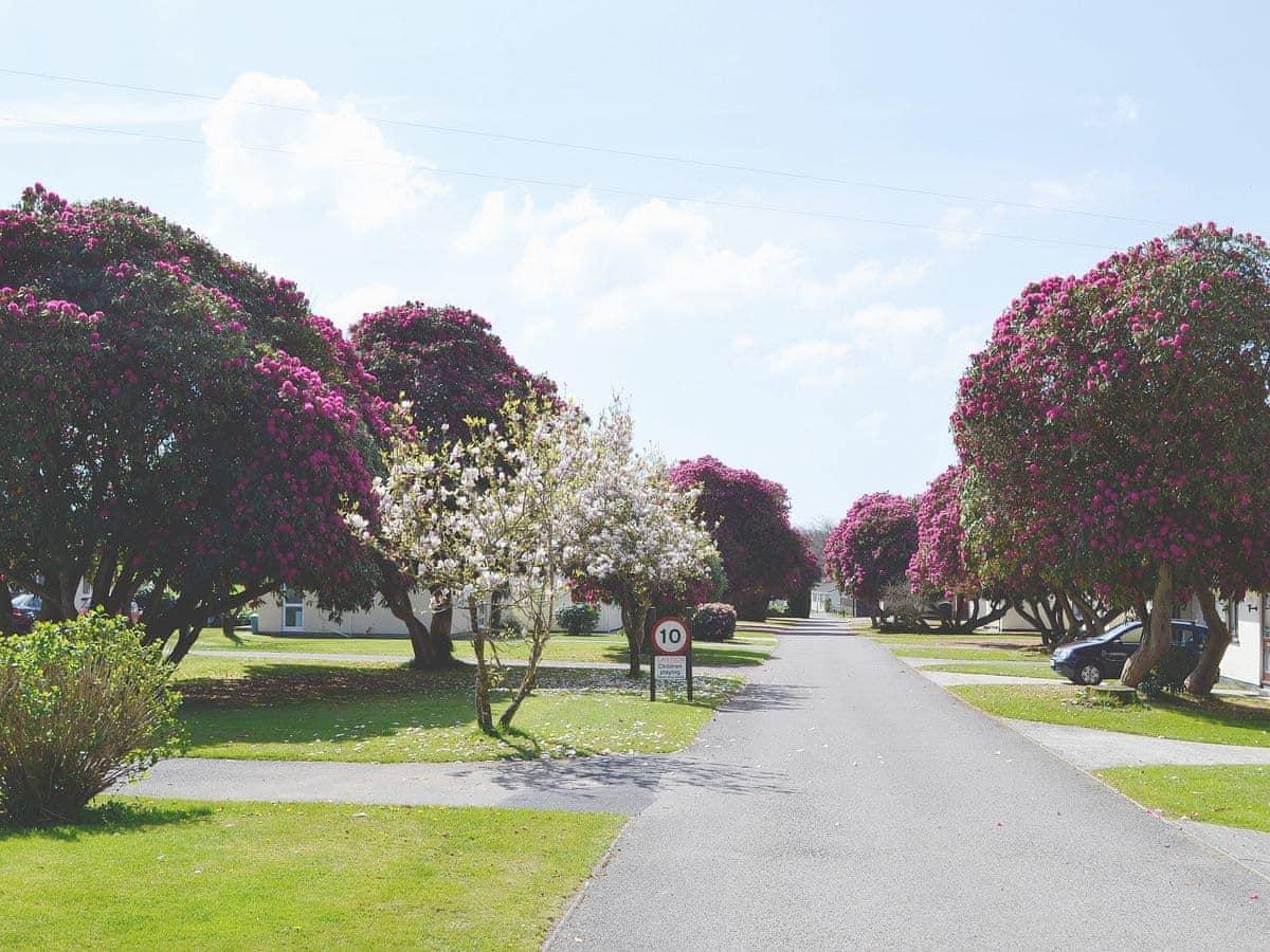Rosecraddoc Holiday Village - Trebah