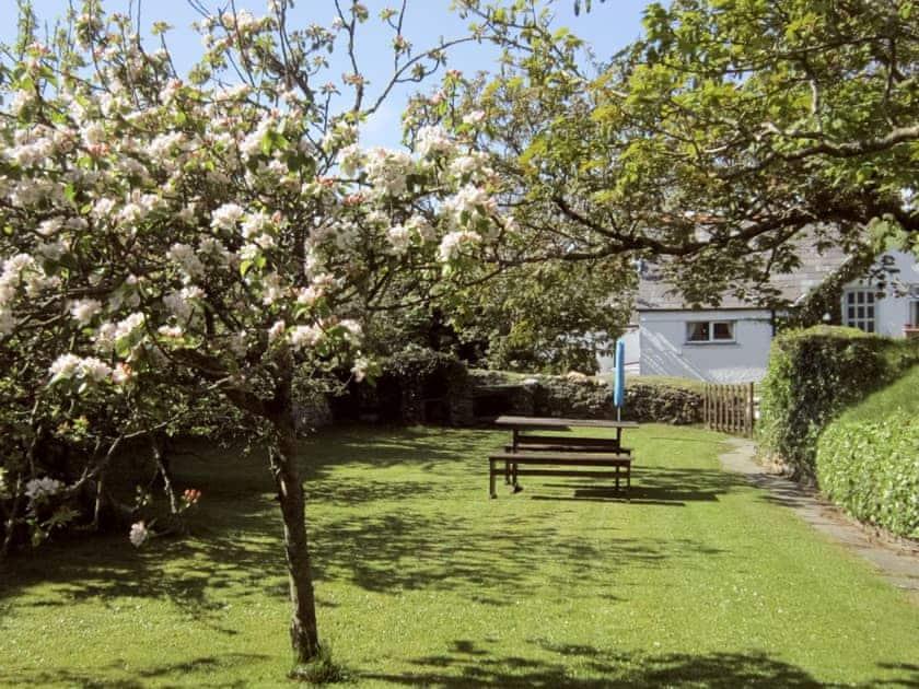 Garden | Trewethen - Orchard Cottage, Tregatta, nr. Tintagel