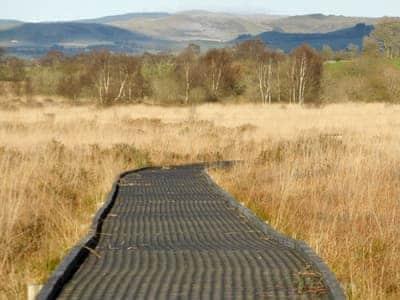 Cons Caron nature reserve | Glan Gors, Tregaron