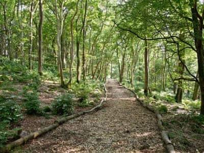 Surrounding area | Old Mill Cottage, Barnbarroch, nr. Dalbeattie
