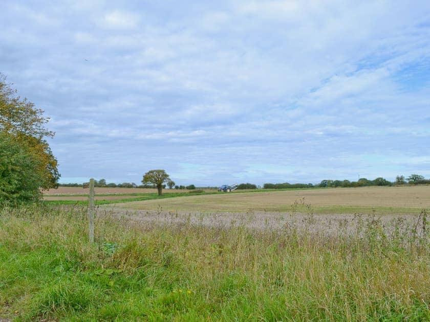 View | Manor Farm Barns - Fox's Den, Witton, nr. North Walsham